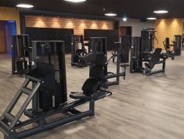 50 x Gym80 Sygnum strength training equipment - refurbished like NEW - transport possible throughout Europe
