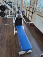 Shoulder Lift / Neck Trainer