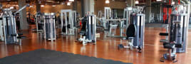 NEUWERTIG! - Star Trac - Human Sport Set 6 Geräte Startrac Regeneriert -  Gewährleistung 12 Monate---  neuwertiger Zustand!!