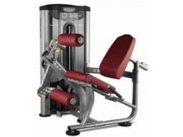 BH FITNESS Leg Curl and Leg Extension (DUAL FUNCTION) L020