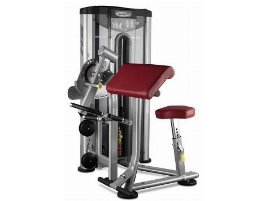 BH FITNESS Biceps Triceps Machine (DUAL FUNCTION) L140