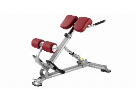 BH FITNESS Lower Back Machine 40º L805