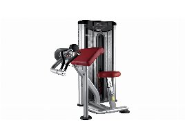 BH FITNESS Larry Scott Bizepsmaschine L130