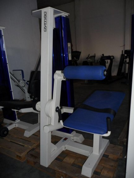 Ad - Glute Machine gym80 - new and used