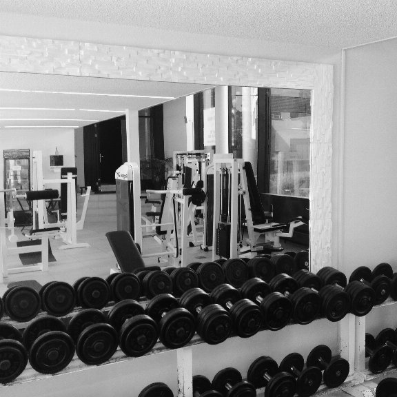 Ad gym inventory for sale!